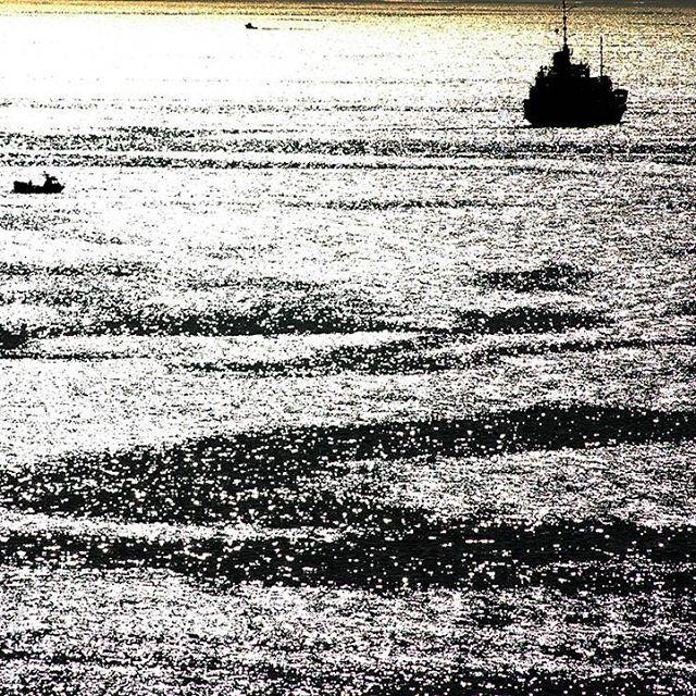 A ONU discute a conservación da biodiversidade mariña en augas internacionais