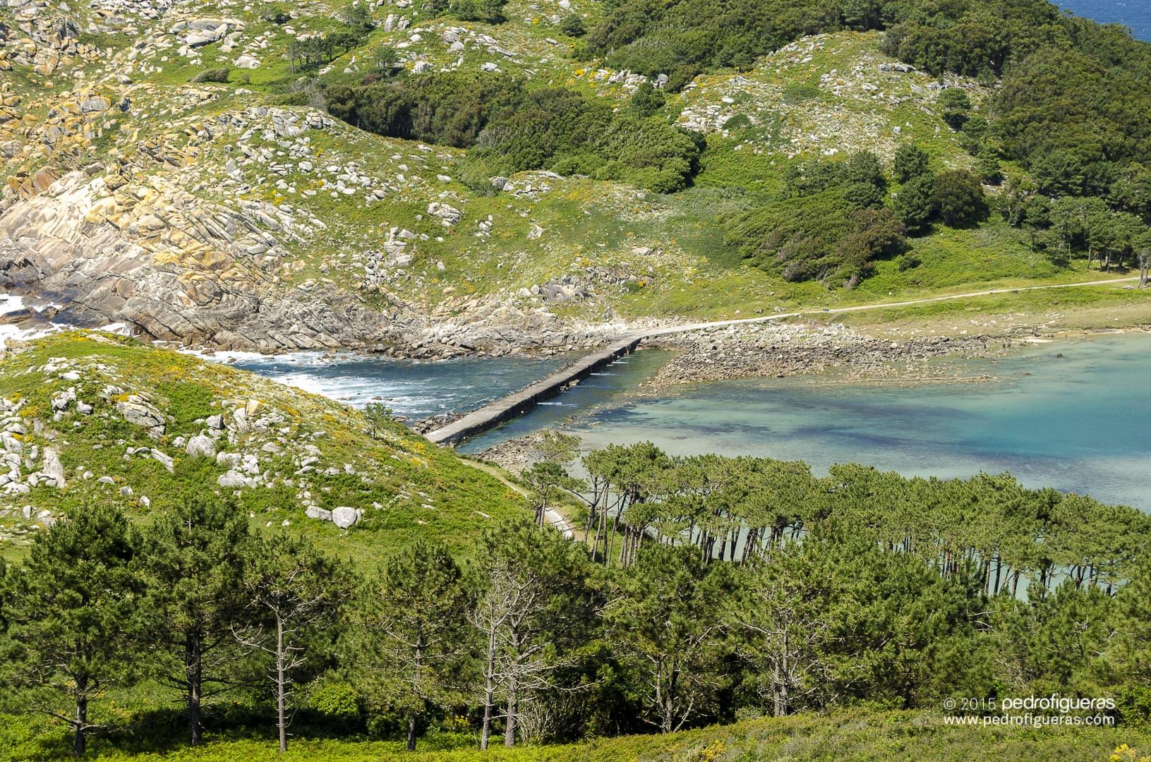 O parque ostrícola das illas Cíes (II)