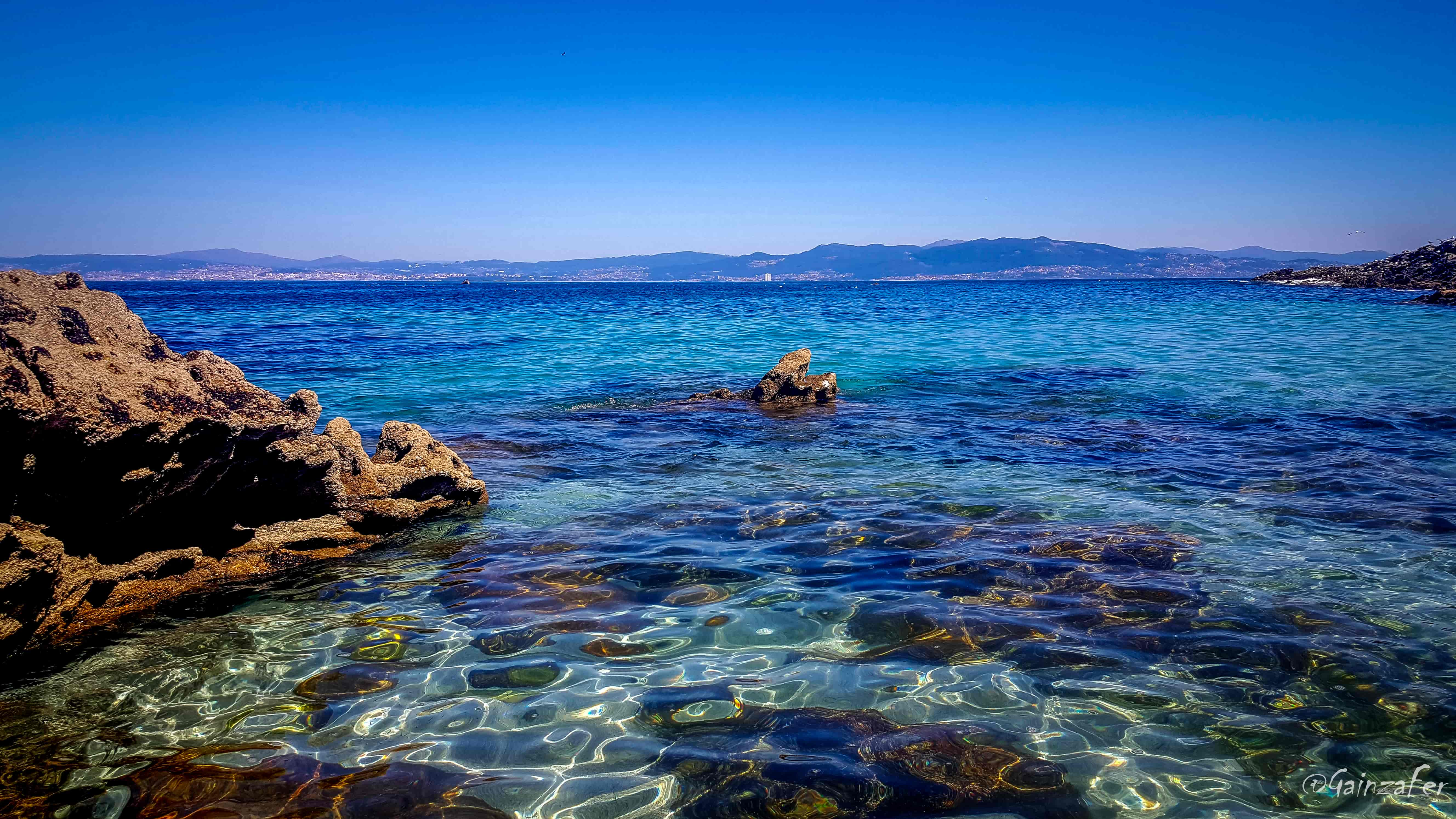 Unha tese do CSIC ofrece novos datos sobre a ecoloxía das paralarvas de cefalópodos na Ría de Vigo