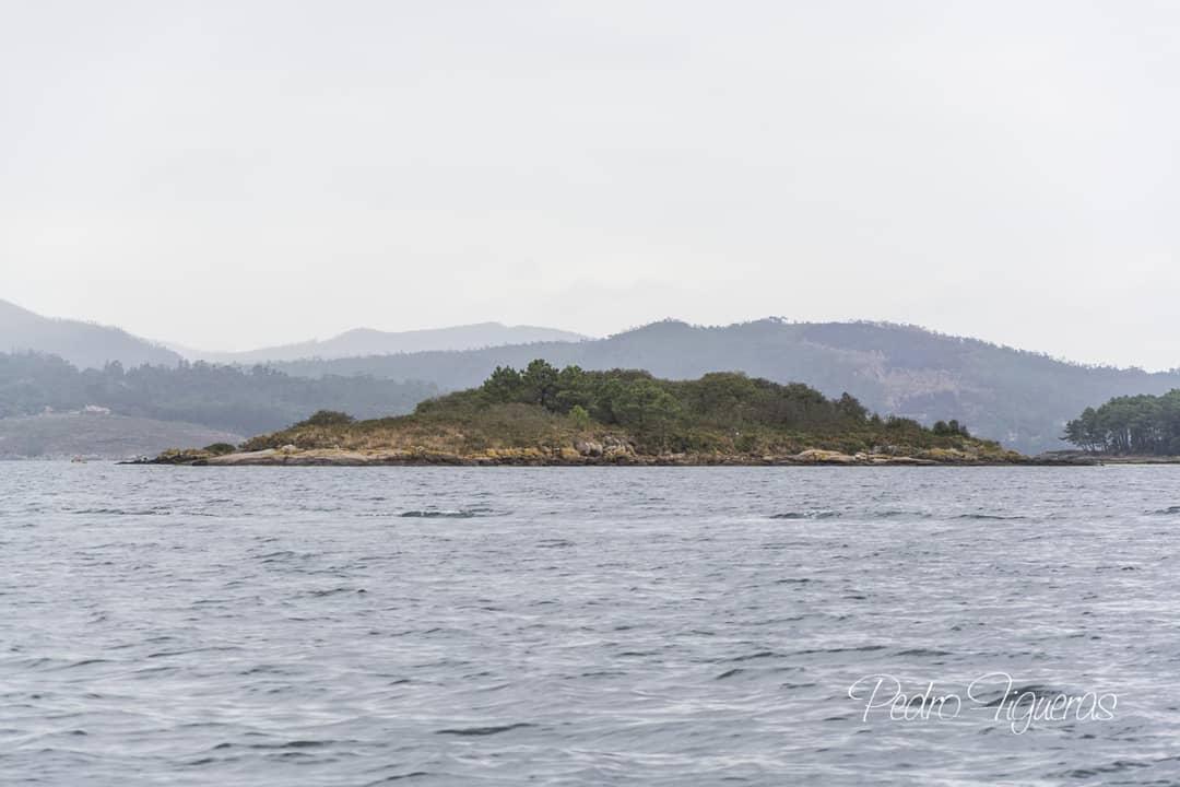 Celebramos el 18 CUMPLEAÑOS de la declaración del Parque Nacional de las Islas Atlánticas de Galicia