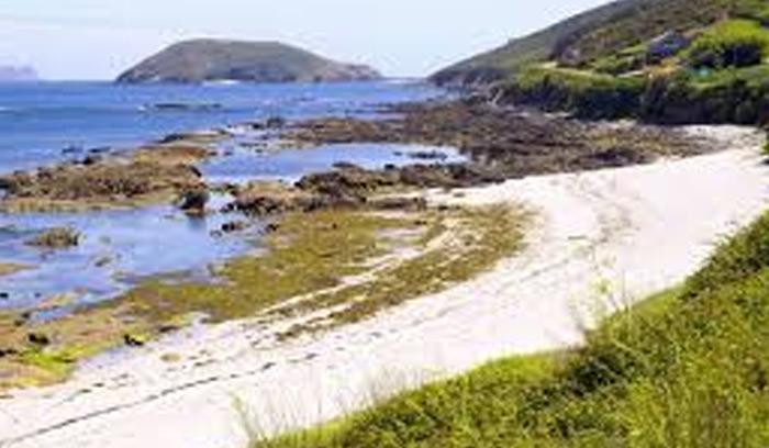 Playa de Canexol