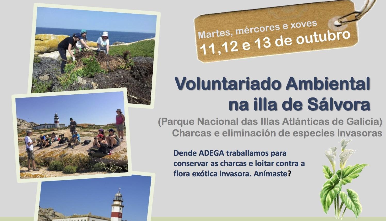 Voluntariado ambiental na illa de Sálvora con ADEGA