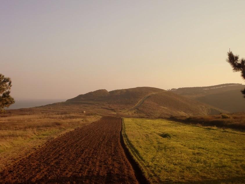 Estudo arqueolóxico do Parque Nacional Marítimo-Terrestre das Illas Atlánticas de Galicia.