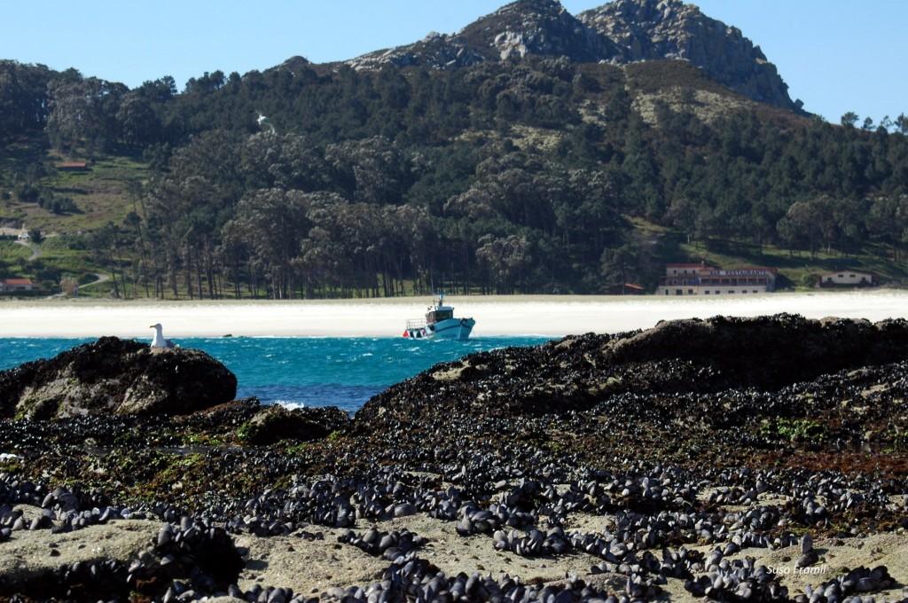 A rede ECOMAR avanza na investigación de beneficios socio culturais das áreas mariñas protexidas