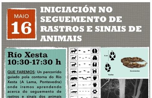 Iniciación en el seguimiento de rastros y señales animales