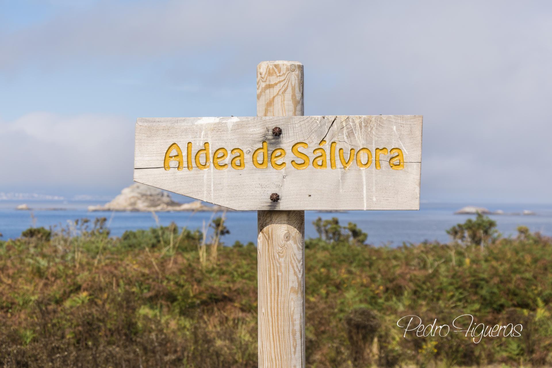 A illa de Sálvora, Ben de Interese Cultural (BIC)