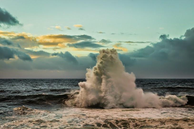 El Día Mundial de los Océanos acercará la biodiversidad marina a más de 150 escolares de Moaña
