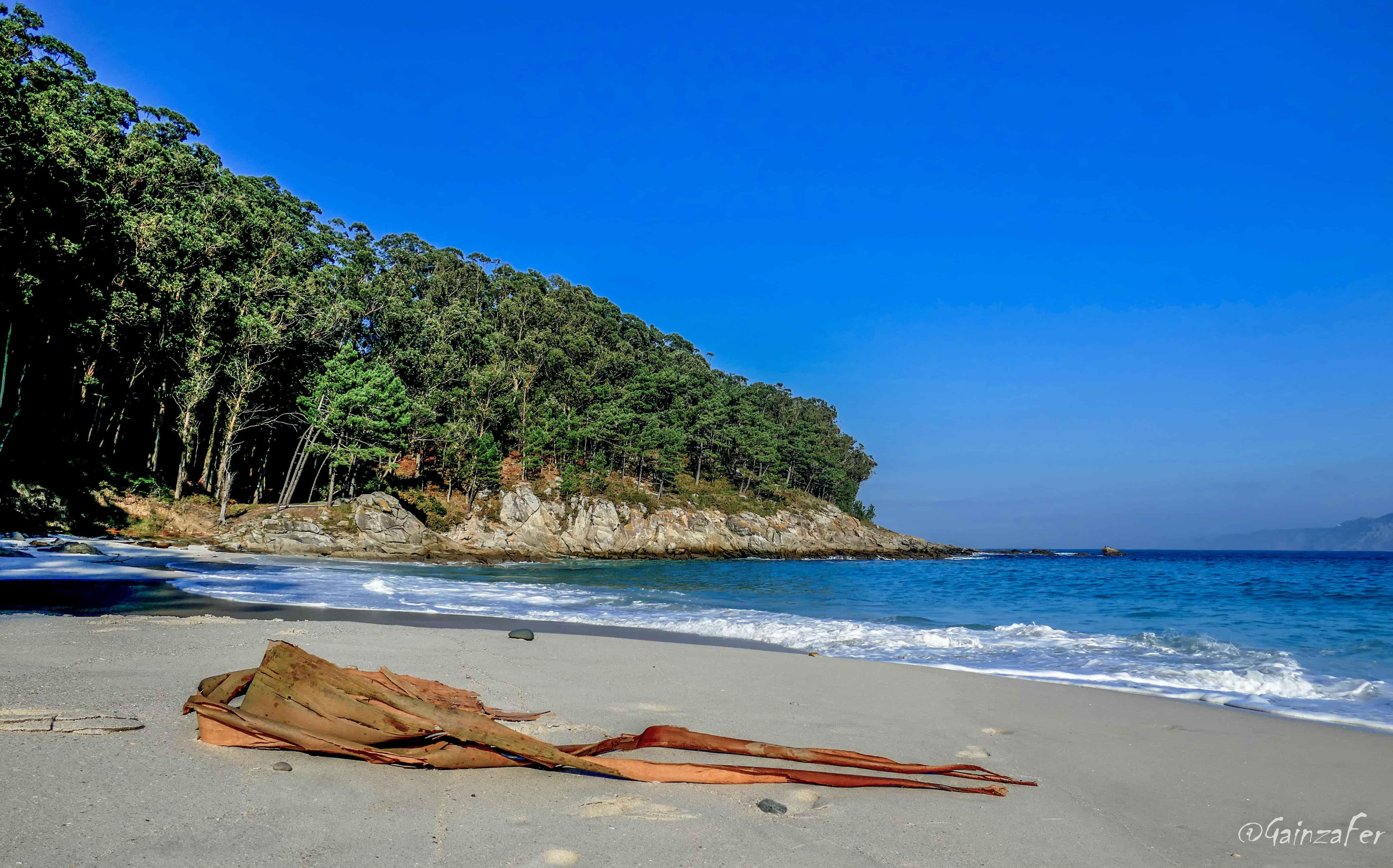 Proposta de inclusión das Illas Atlánticas de Galicia na lista de humidais de importancia internacional Ramsar