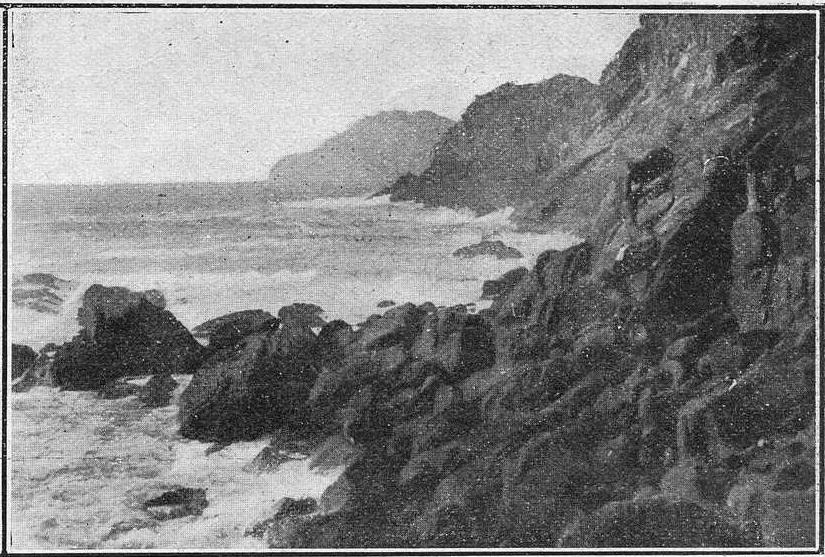Brutalidade e salvaxismo nas Cíes. 1900 (I)