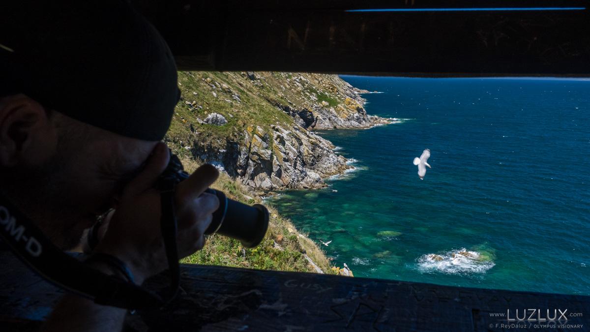 Descubrindo o Parque Nacional. Visitas guiadas en Cíes, Ons, Sálvora e Cortegada