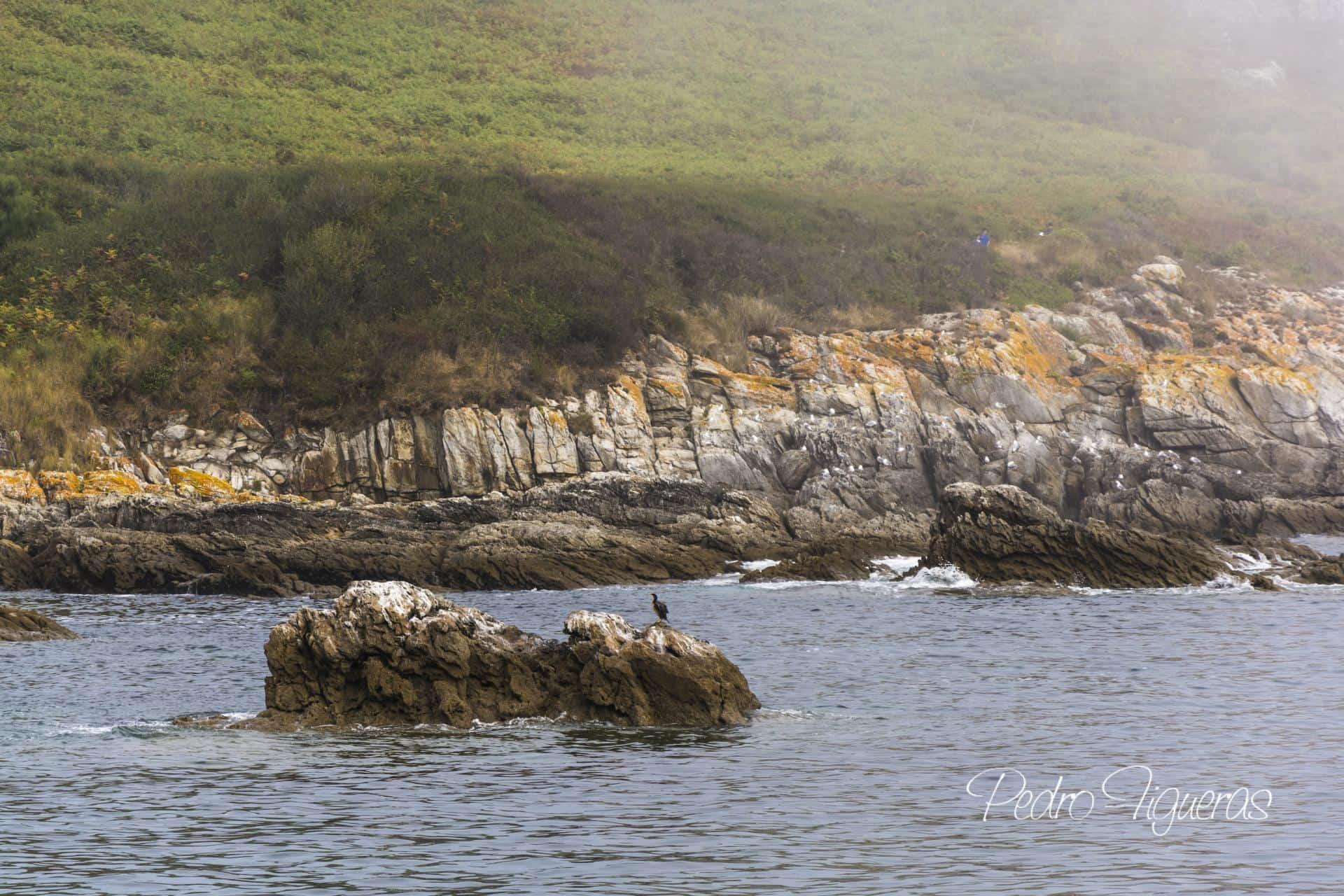 """O Mar. As súas xentes. """"Ons: unha illa habitada"""". Vida cotiá"""