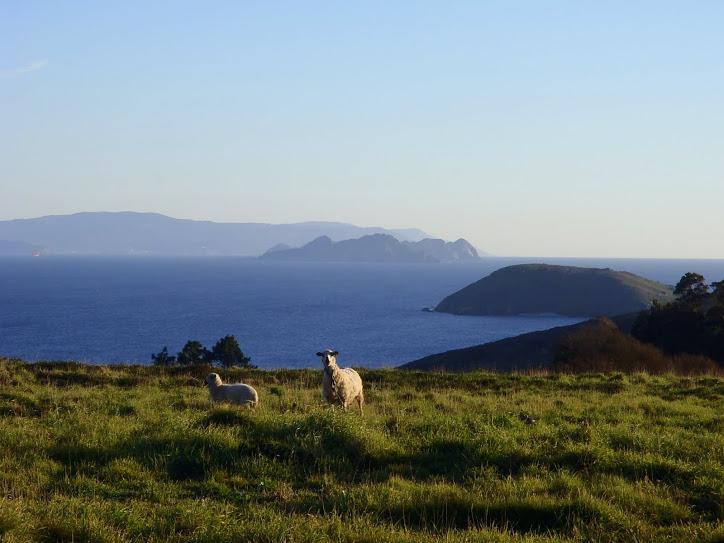 Un Parque Nacional en las Rías Baixas de Galicia