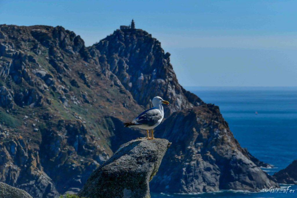 XIII Xornada formativa para profesionais do sector turístico sobre o Parque Nacional
