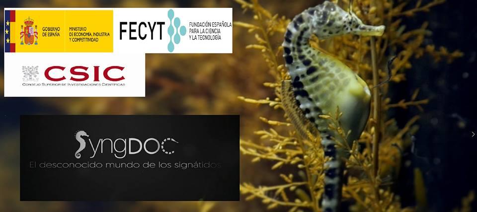 Conclúe o proxecto divulgativo SyngDoc