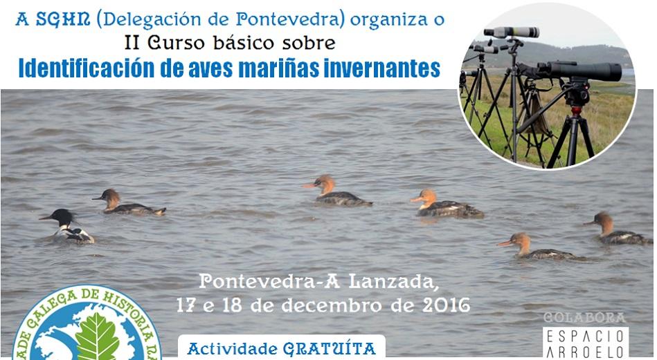 II curso básico sobre identificación de aves mariñas invernantes