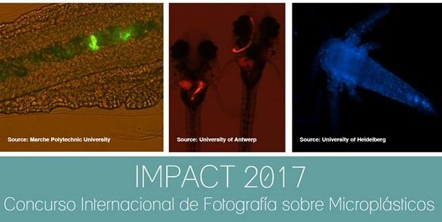 Un concurso fotográfico que plasma o problema do microplástico nos ecosistemas mariños