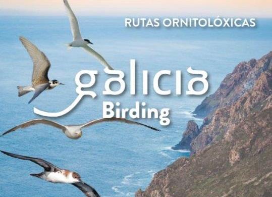 A plataforma Galicia Birding amósase ao mundo no maior certame ornitolóxico de Europa