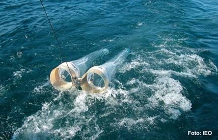 Científicos do IEO estudaron as variacións do zooplancton na plataforma galega durante 17 anos