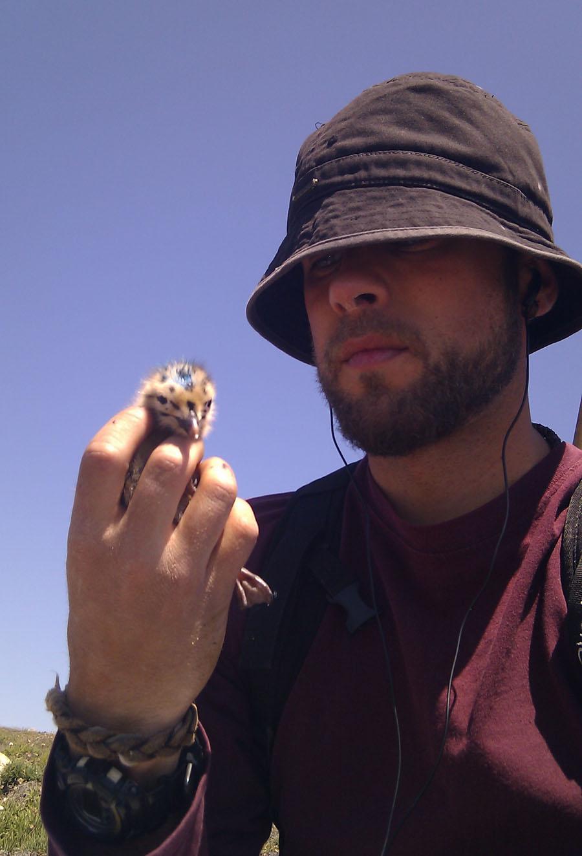 investigador duvi gaivota