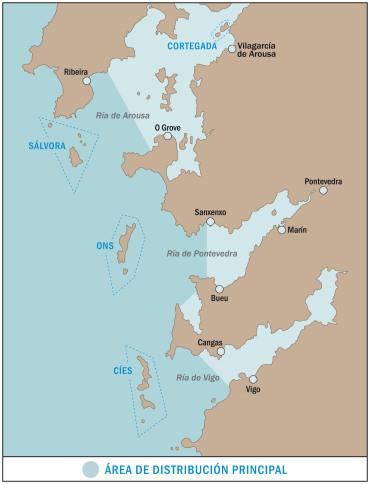 MAR DE AVES mapa