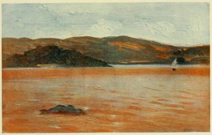 Mareas vermellas e fitoplancto tóxico en Galicia
