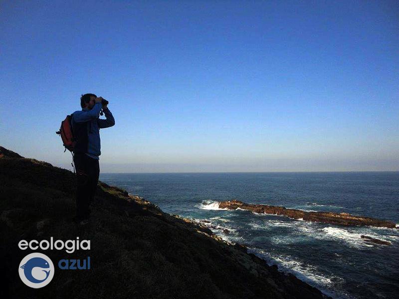 O naturalista dixital por Ecoloxía Azul
