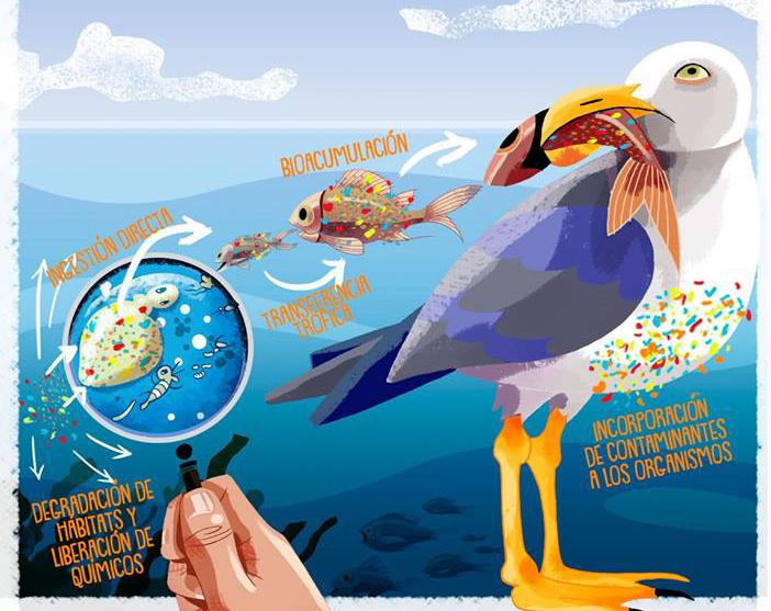 Oceans of Plastics achega á sociedade as investigacións sobre o impacto dos plásticos no medio mariño