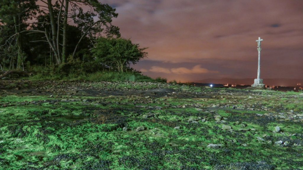 Nocturna de punta Corveiro na illa de Cortegada