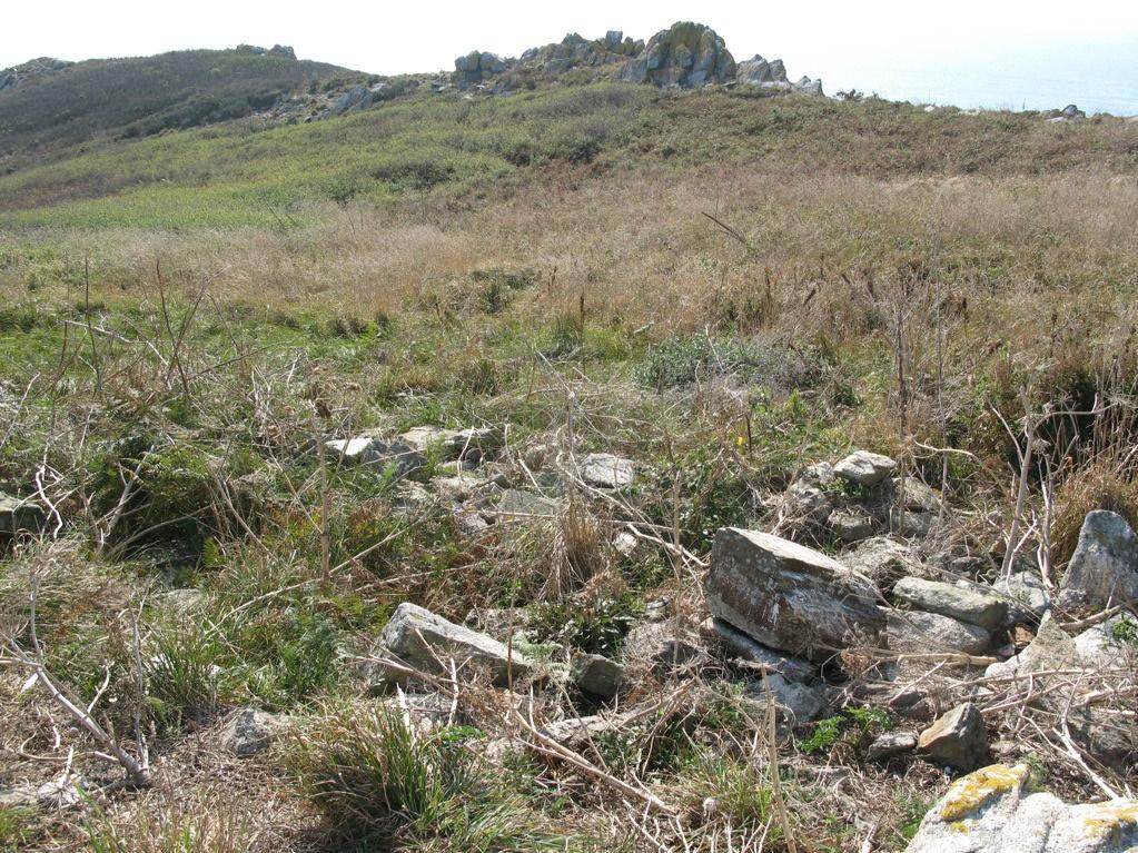 ruinas onza