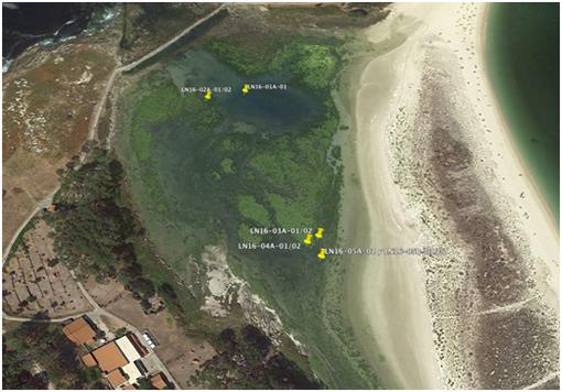 Paleopark: a lagoa dos Nenos das illas Cíes hai 6.000 años (I)